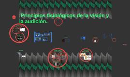 Copy of Principios fisiológicos de la visión.