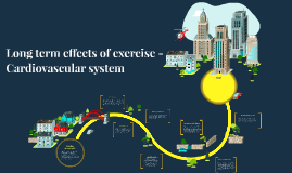 Long term effects of exercise - Cardiovascular system