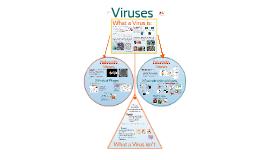 AP Bio- Information 4:  Viruses