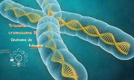 Trisomía cromosoma 18.