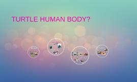 TURTLE HUMAN BODY?