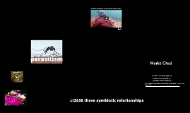 ct2638 three symbiotic relationships