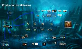 Copy of Producción de Moluscos