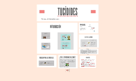Copy of TUCÍDIDES