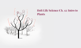 Holt Life Science Ch. 12: Intro to Plants