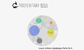 Proceso de Haber-Bosch