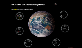 SwimBHS Ecosystem Computer Investigation