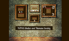 PAWS Shelter and Humane Society