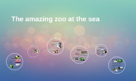 The amazing zoo at the sea