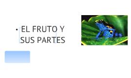 Copy of EL FRUTO Y SUS PARTES
