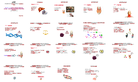 Grupo de Ensino em Doenças Infecciosas e Parasitárias - GEDI