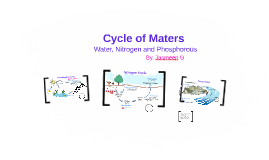 Cycle of Maters