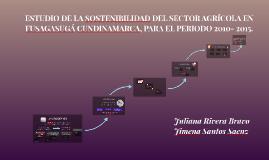 ESTUDIO DE LA SOSTENIBILIDAD DEL SECTOR AGRÍCOLA EN FUSAGASU