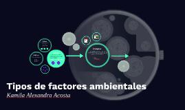 Copy of Copy of Tipos de factores ambientales