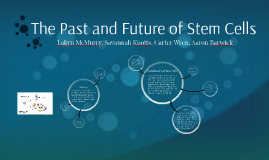 The Past and Future of Stem Cells