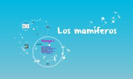 Copy of Los mamiferos