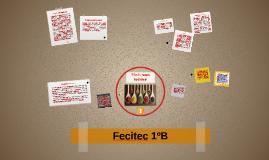 Fecitec 1ºB