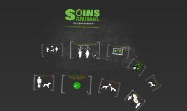 Pourquoi et comment puis-je utiliser le site Soins Animal ?