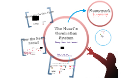 Copy of The Heart's Conduction System