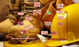 Copy of Elementi di Antinfortunistica