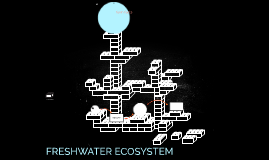 Freshwater group