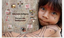 Copy of Copy of Copy of Educação Indígena