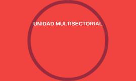 UNIDADNMULTISECTORIAL