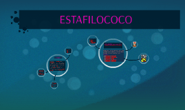 Copy of ESTAFILOCOCO (Staphylococcus)