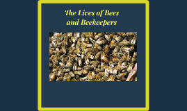 The Lives of Bees and Beekeepers