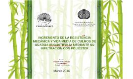 Copy of Miniproyecto_A_Padilla