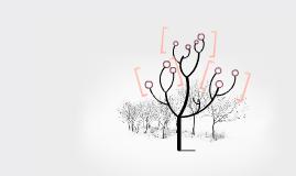 Symbiosis Spruce Tree & Mistletoe