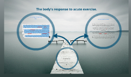 Copy of body' response to acute exercise