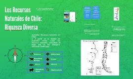Los Recursos Naturales de Chile
