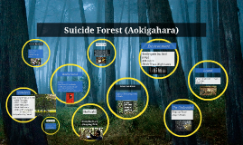 Suicide Forest (Aokigahara)