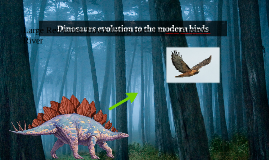 Dinosaurs evolution to the modern birds