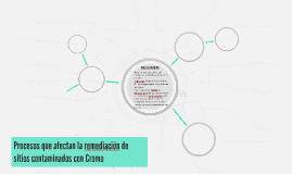 Procesos que afectan la remediación de sitios contaminados c