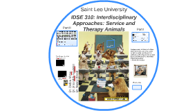 IDS 300: Interdisciplinary Approaches: Service and Therapy A