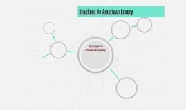 Brochure de American Luxury
