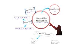 Megacities workshop