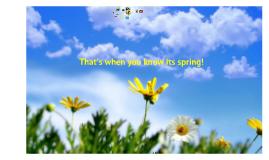 Copy of Spring