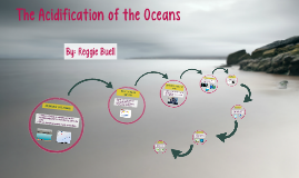 The Acidification of the Oceans
