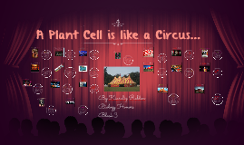 A Plant Cell Is Like A Circus...