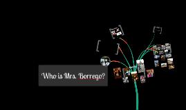 Who is Mrs. Borrego?