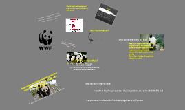 Endangered Pandas Prezi