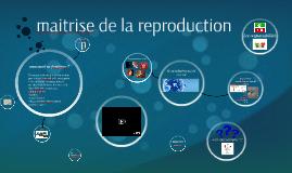 Copy of la maitrise de la reproduction