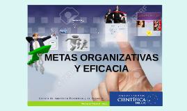 METAS ORGANIZATIVAS Y EFICACIA