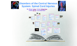 Disorders of the Central Nervous System: Spinal Cord Injuries