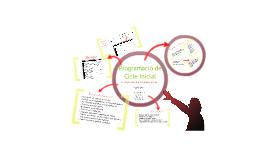 Programació de Cicle Inicial
