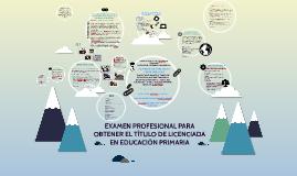 INFORME DE PRÁCTICAS PROFESIONALES