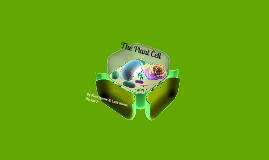 Shanae Metcalf _per.3-Plan Cell